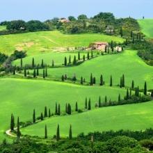 Сокровище Тосканы